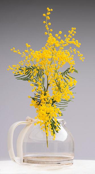 Packshot fleur vase photo