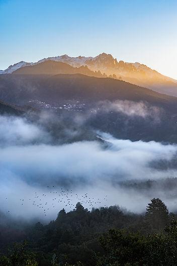 soccia deux sorru corse vico rotondu corse tourisme parc régional