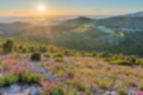 col gineste marseille soleil coucher notre dame fleurs mont puget randonnée klape