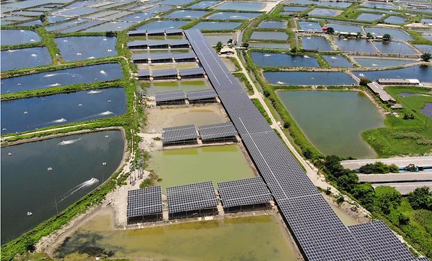 真美晶台南漁電共生場域