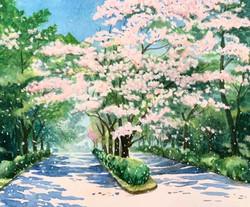 Paint 05