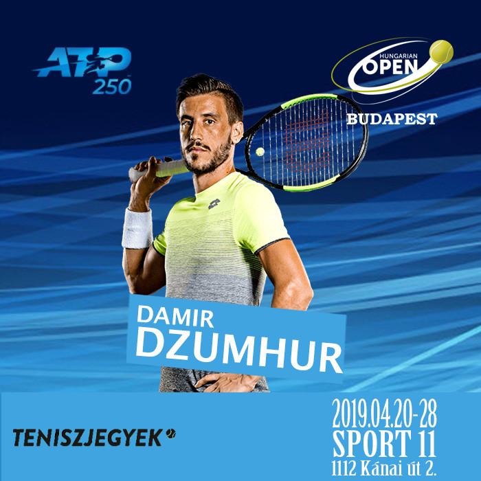 Damir Dzumhur