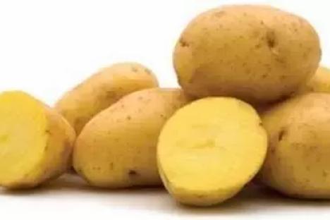 Chef's Potatoes 50 lb Bag