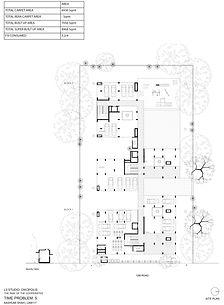 Aashumi TP5-1.jpg
