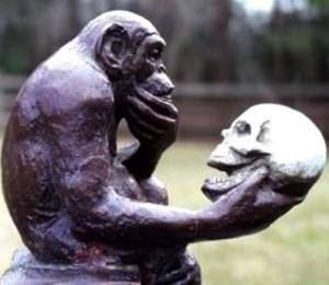 Scimmia_teschio