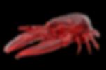 Højby Kro skaldyrsaften hummer