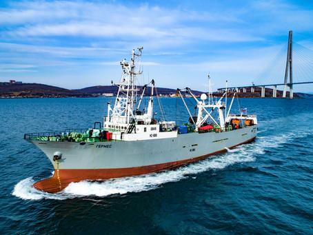 """Приход СРТМ """"Гермес"""" в порт Владивосток для подготовки к промысловому рейсу"""
