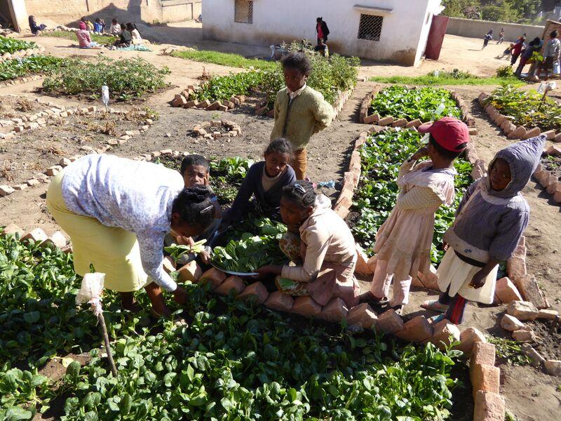 P1010059 Arbeit im Garten1