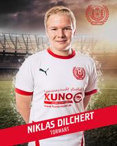 Niklas Dilchert