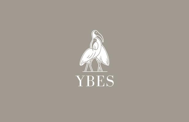 YBES-thumbnail-grey_title.jpg