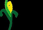 Pioneer_Logo_art.png