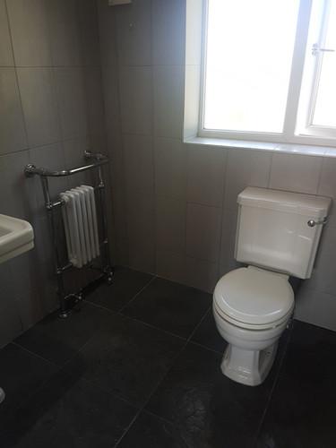 BathroomBen3.jpg