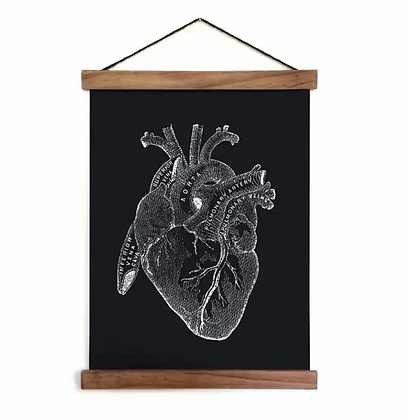 Vintage Anatomy Heart Diagram in Black Canvas