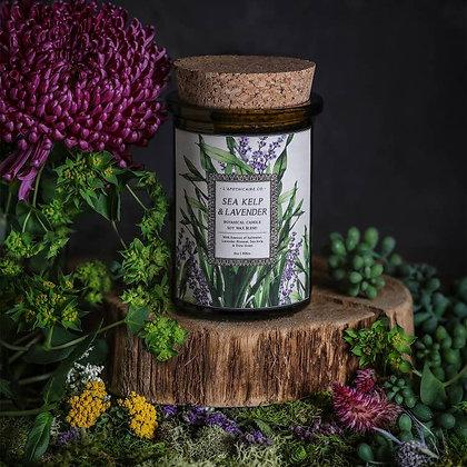 Botanica: Sea Kelp & Lavender Candle