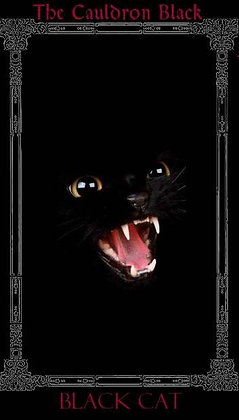 Black Cat Black Label 7-Day Candle