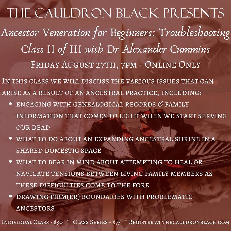 Ancestor Veneration for Beginners: Troubleshooting, Class II of III with Dr Alexander Cummins (2)