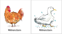Withers Farm / Ducks & Chickens