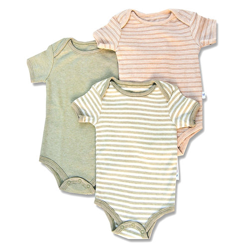 Cub Stripe Bodysuit Value Pack