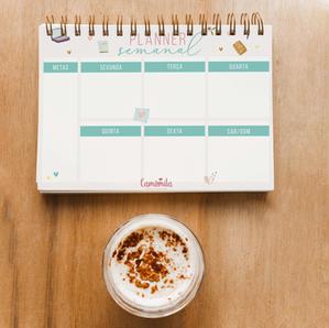 GRATUITO! FREEBIE! Planner semanal para organizar sua vida!