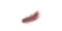 Pluma red.png