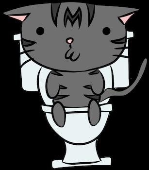 Toilet Momo