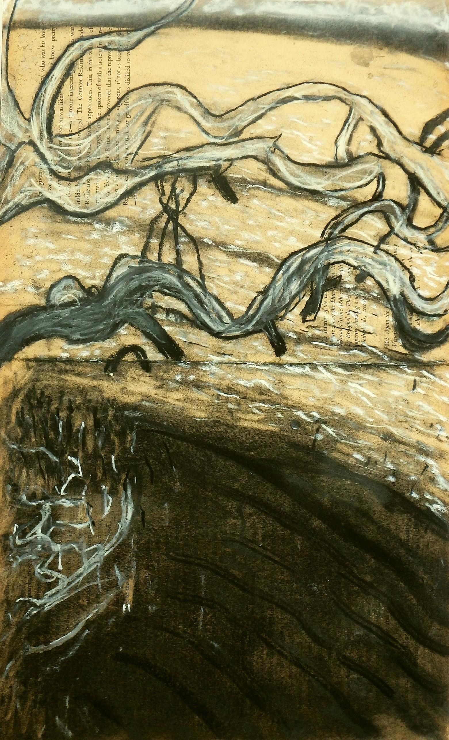 galloping mangroves