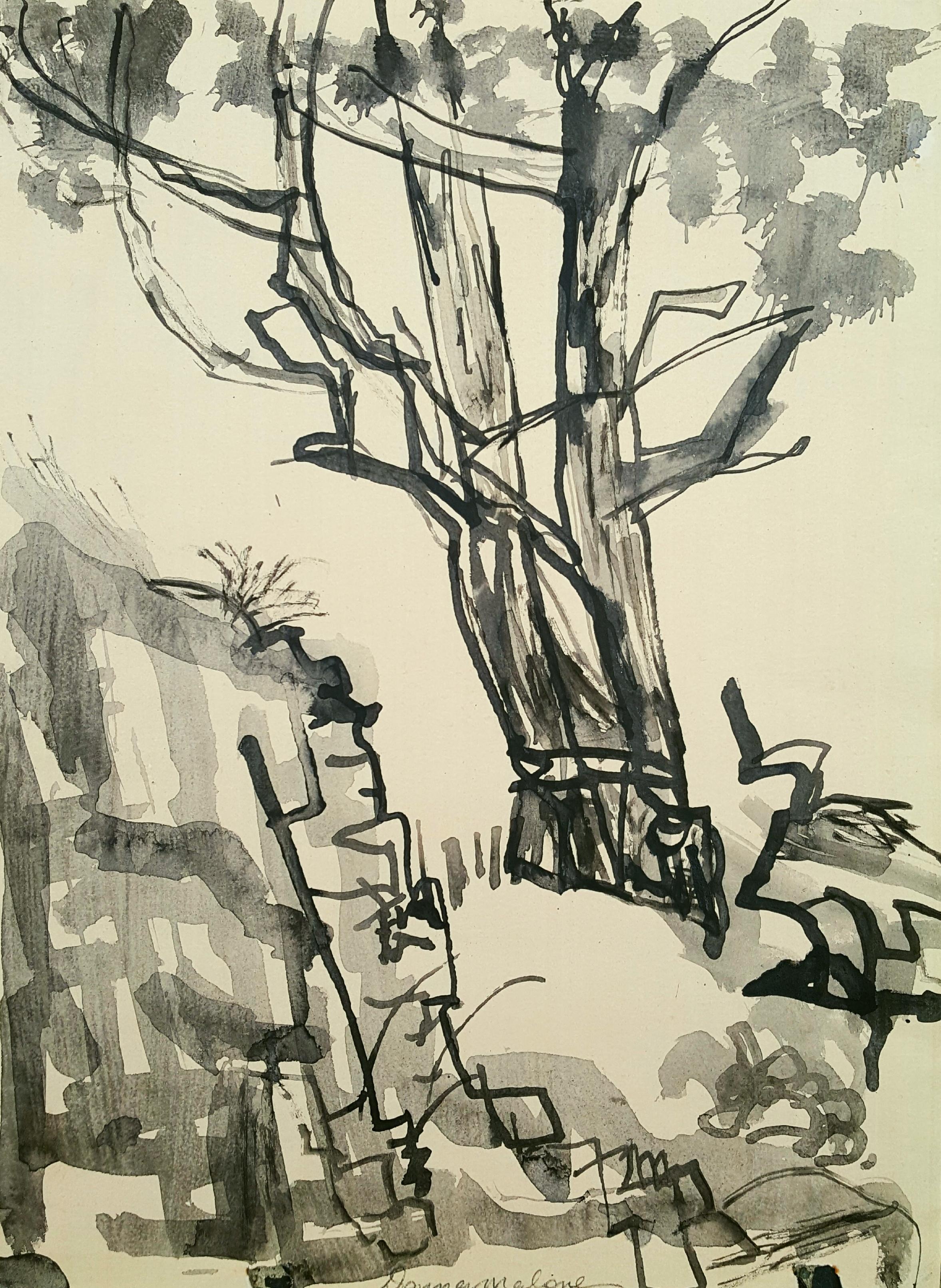 V Tree- Bull Bay
