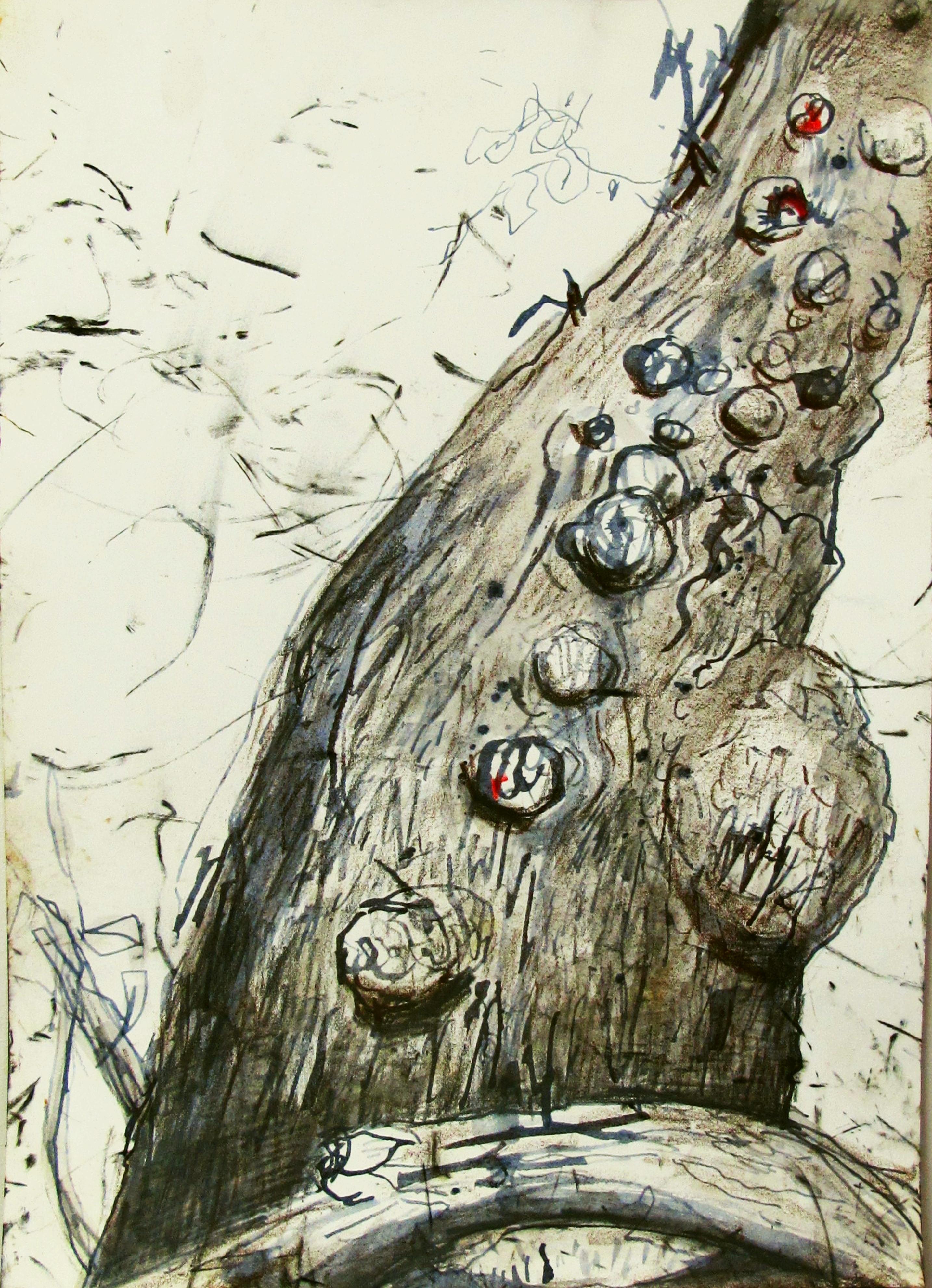 river gum trunk