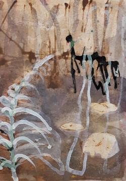black pond fern arbourt