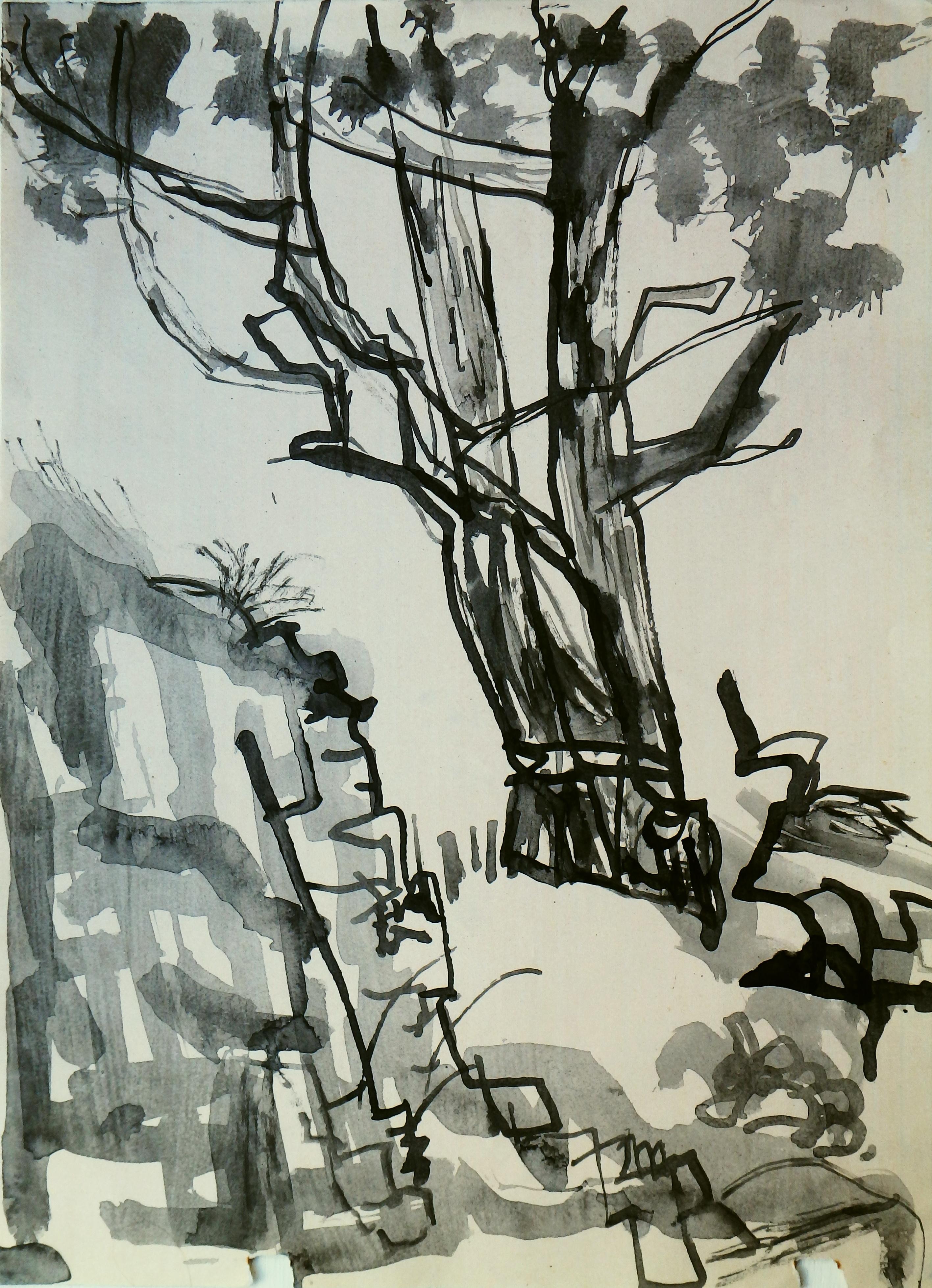 V- tree - Bull Bay