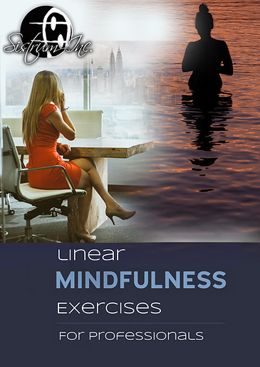linear mindfullness meditations cover.pn