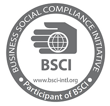 bsci-audit-services-in-india-500x500.png