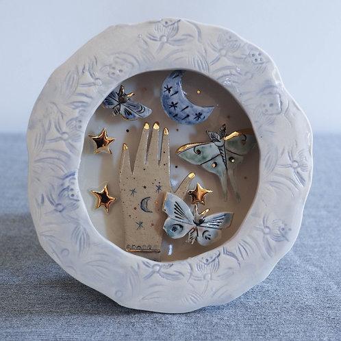 Wall box -Moths