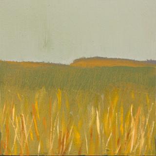 Tall Grass/Brown Hills
