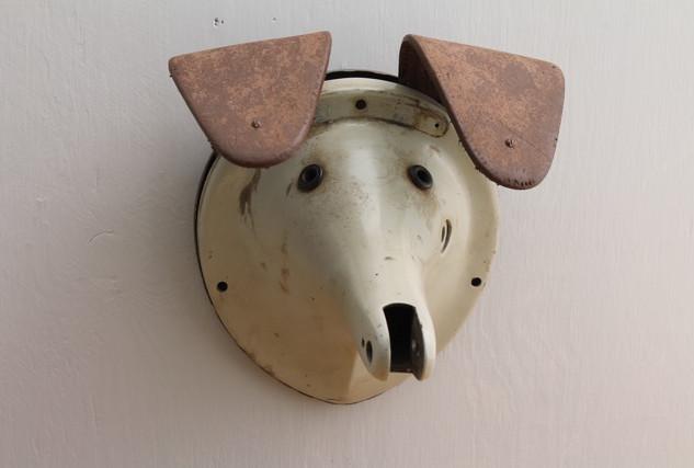 Leonard Streckfus Dog Head.jpeg