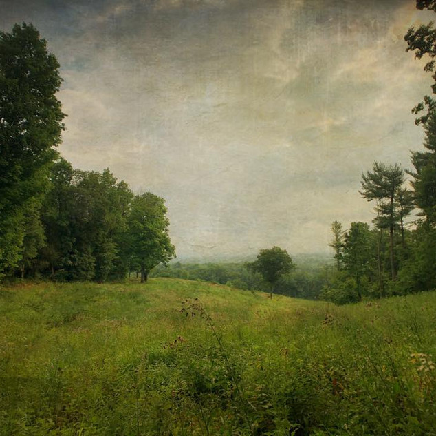 The North Meadow, Olana