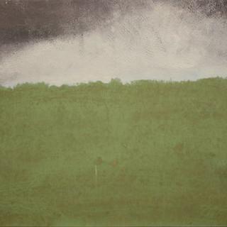 Green Field/Gray Sky