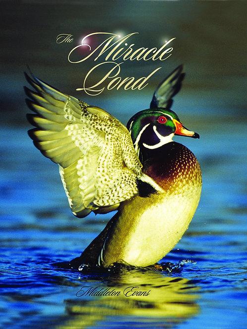 Middleton Evans, Miracle Pond