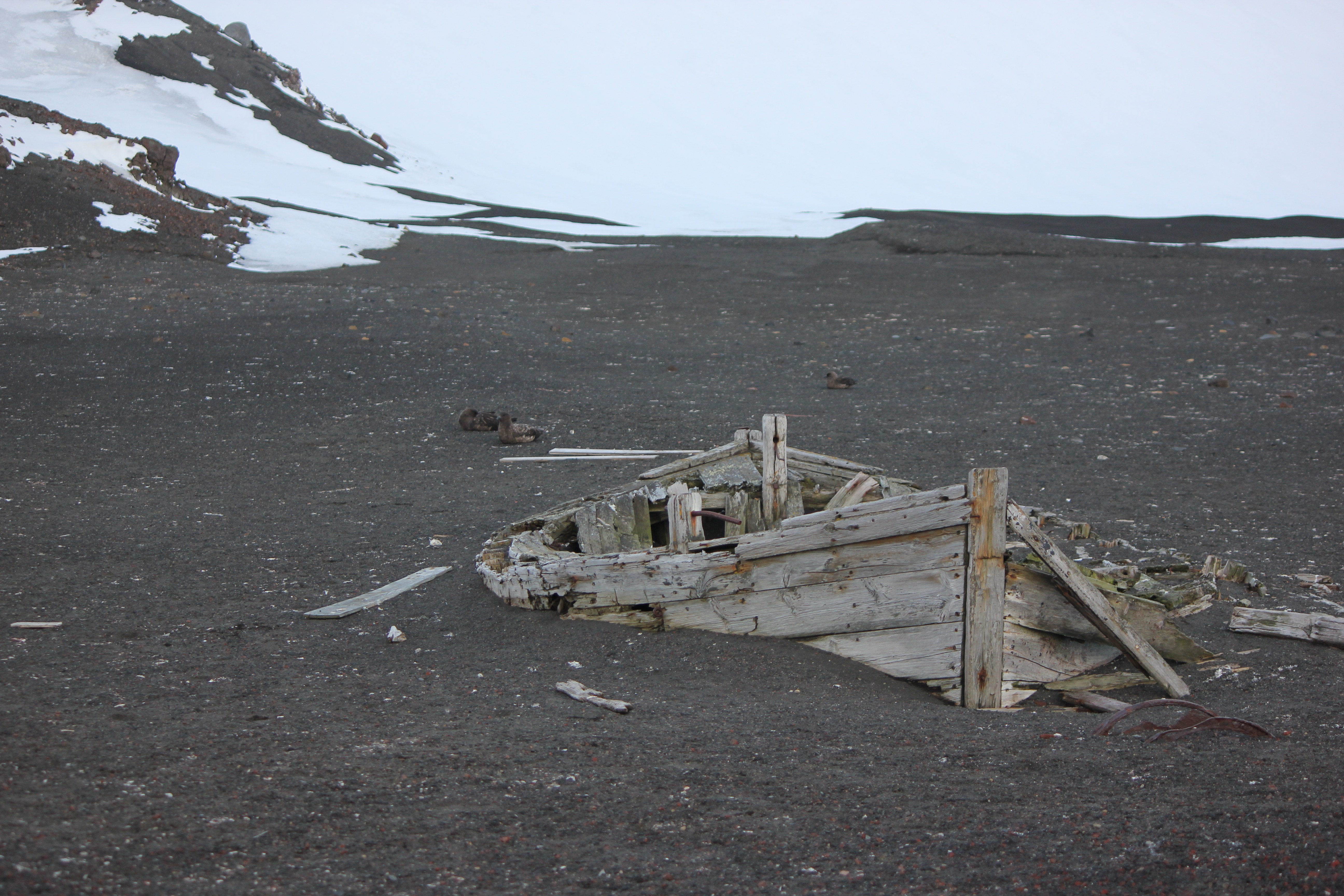 Untitled Antarctic