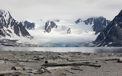 Untitled Arctic