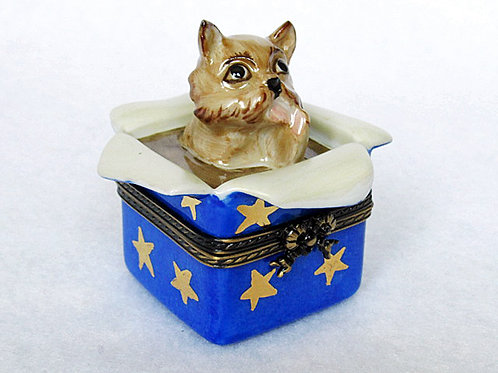 Belgian Griggon Limoges hand painted porcelain box