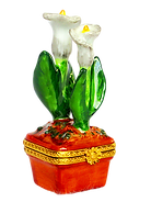 Cala Lily_clipped_rev_1.png