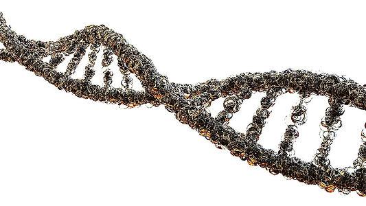 gout-biology-dna-strand-science.jpg