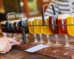 animation bar a bières, animation degustation bières, degustation bières pour soiree entreprise