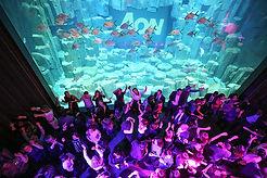aquarium-nef-soiree