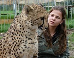 Animal guepard pour evenement et soiree