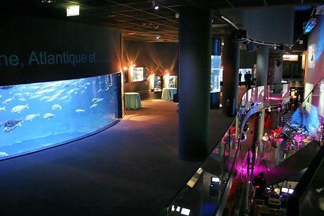 aquarium-nef-1er-etage