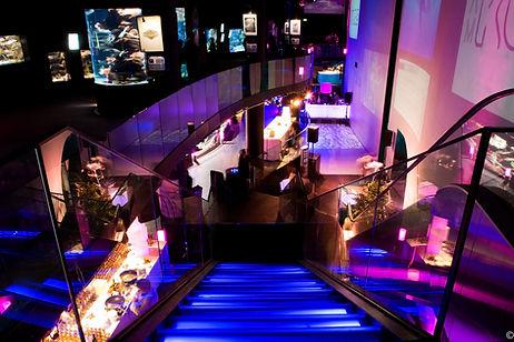 aquarium-nef-escaliers