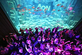 Animations pour soiree theme ocean / water