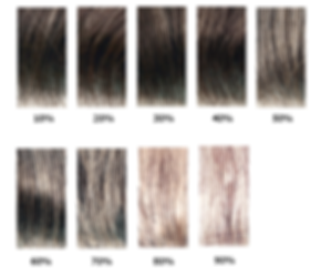 Shades of grey in custom lace wigs